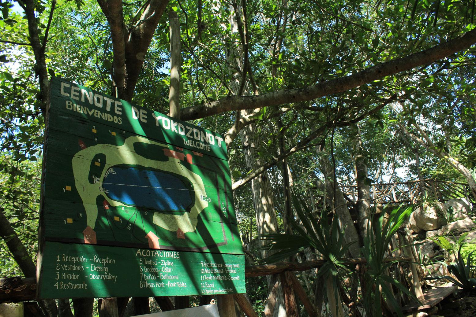 Cenote-Yokdzonot-(7)