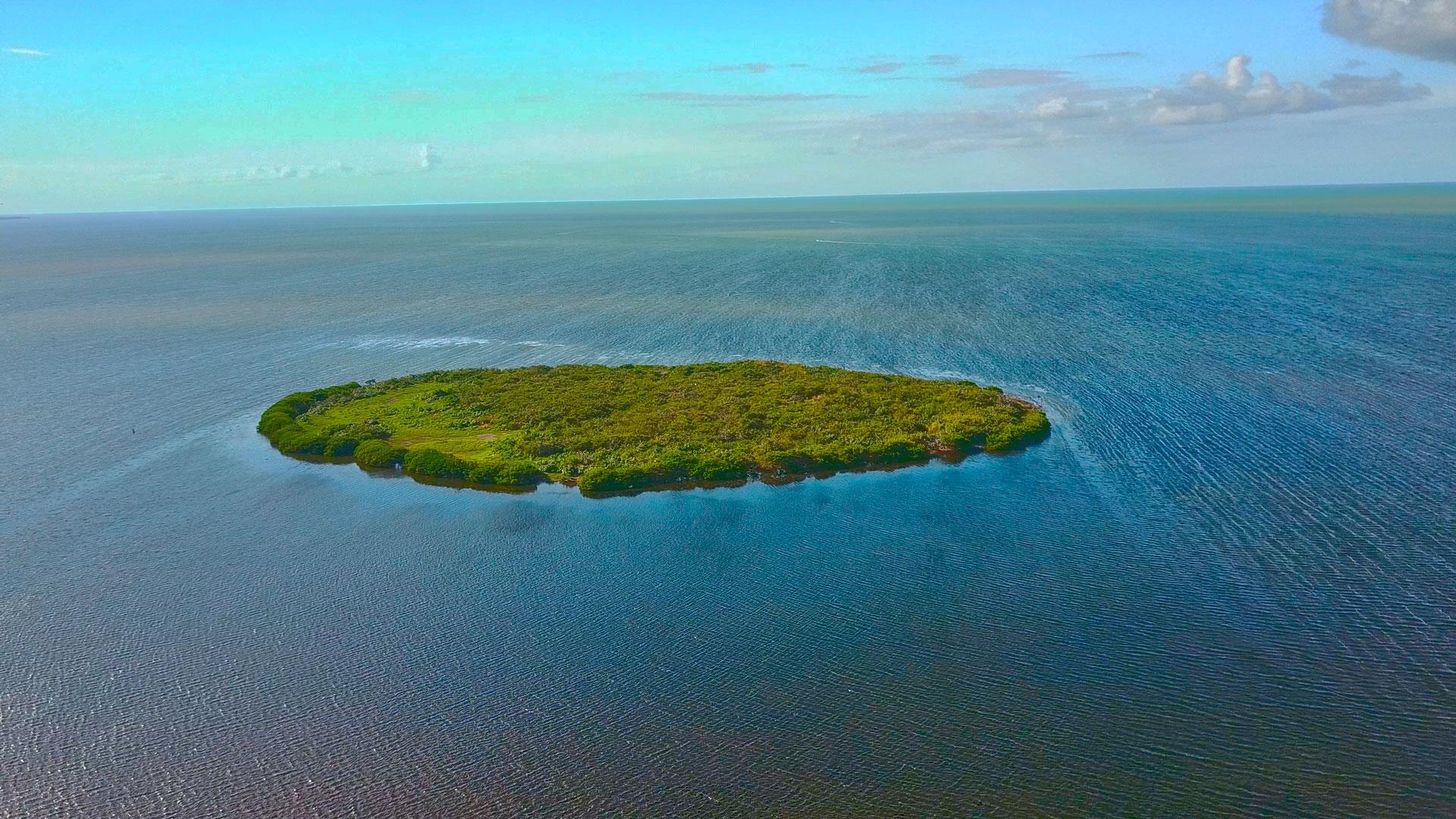 San-Felipe-Aerea-Isla-Pajaros–web